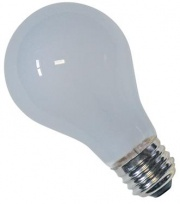 A19 12 V Light Bulb White-Incandescent