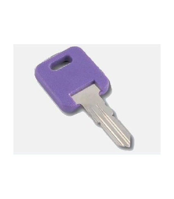 Buy AP Products 013-690326 Global Replacement Key - Doors Online RV Part