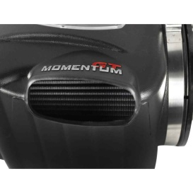 Buy Advanced Flow Engineering 5174104 Momentum GT Pro DRY S Cold Air