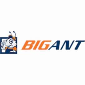 Buy Big Ant IP734/543 WLS Bigant 2.5' Caster Wheel Sets - RV Storage