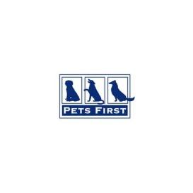 Buy Pets First FL3036MD Collegiate Pet Accessories, Dog Collar, Florida